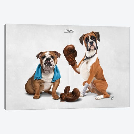 Raging I Canvas Print #RSW230} by Rob Snow Canvas Wall Art