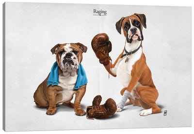Raging I Canvas Art Print