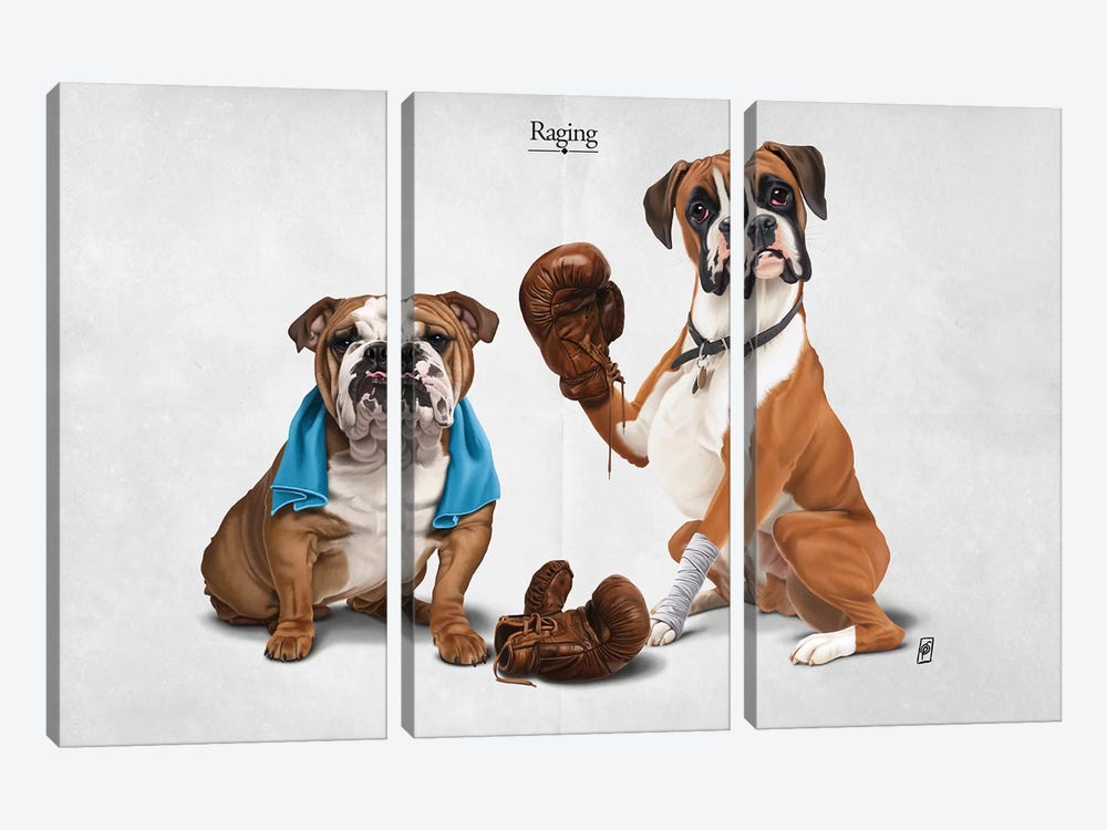 Raging I 3-piece Canvas Print