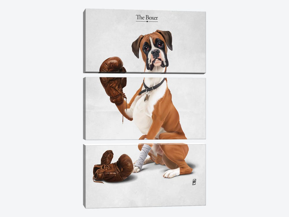 The Boxer I by Rob Snow 3-piece Canvas Wall Art