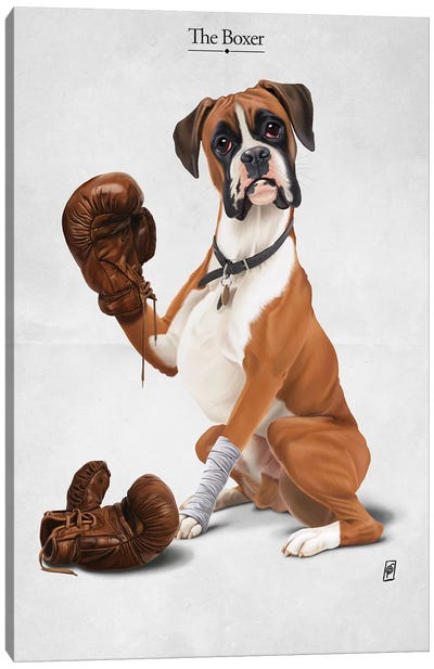 The Boxer I Canvas Art Print
