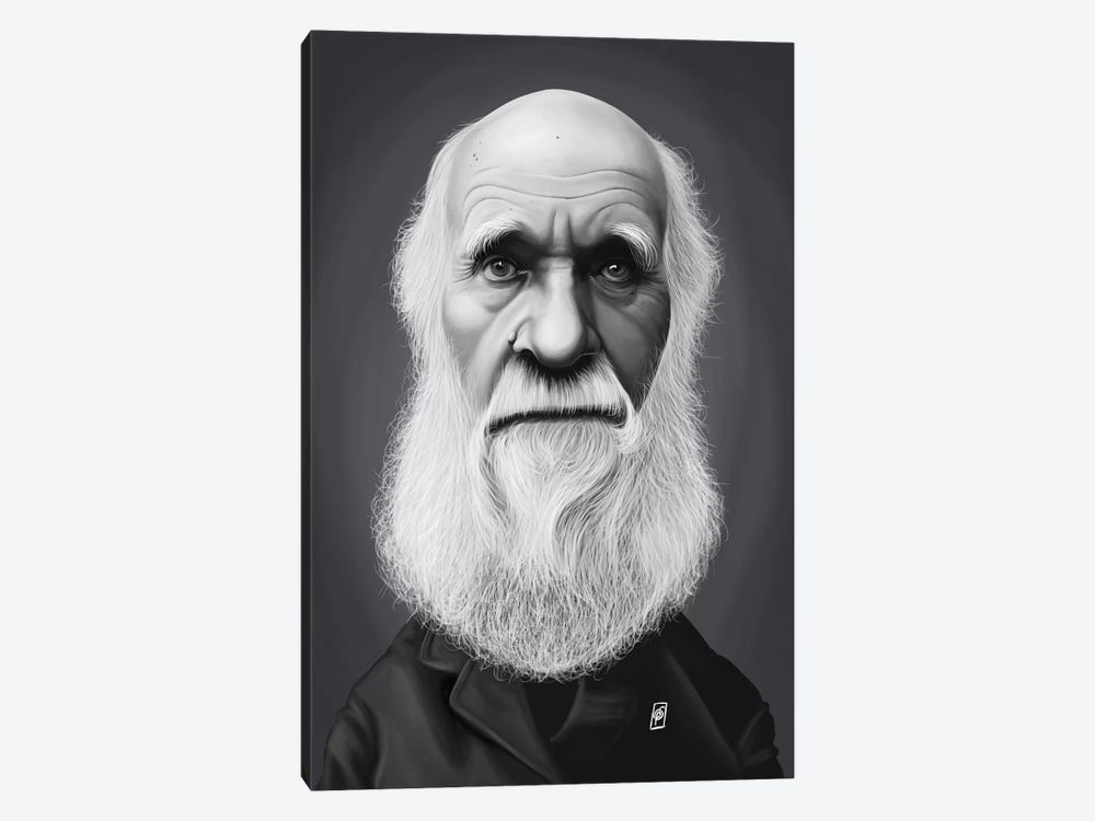Charles Darwin by Rob Snow 1-piece Canvas Art Print