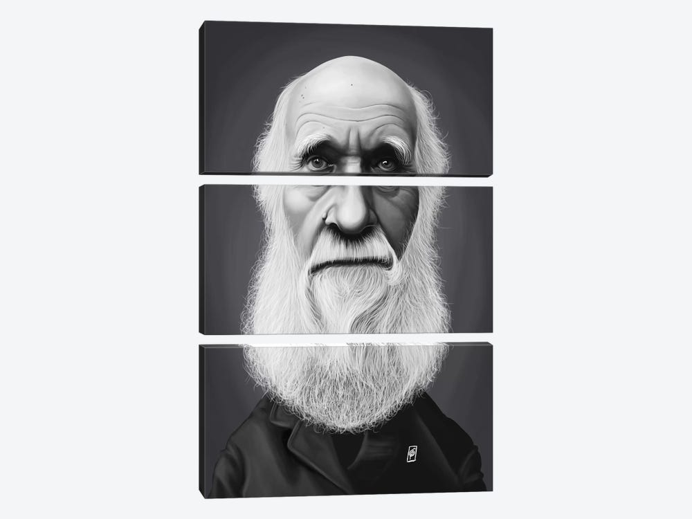Charles Darwin by Rob Snow 3-piece Canvas Art Print