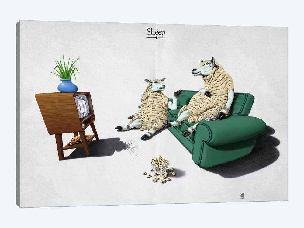 Sheep by Rob Snow 1-piece Canvas Artwork