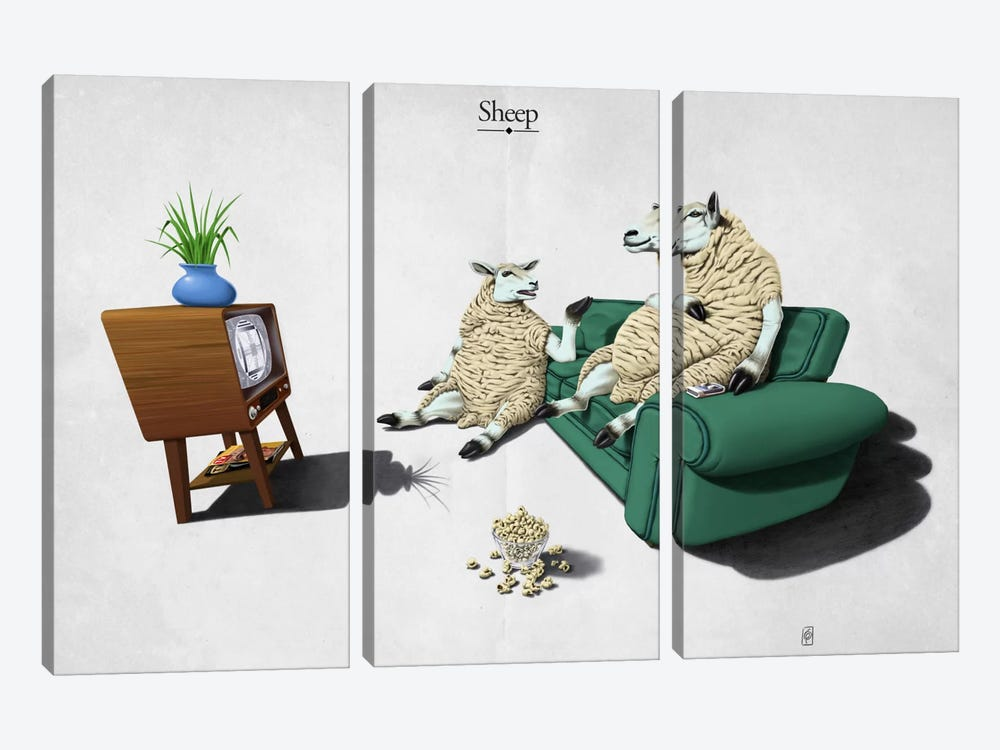 Sheep by Rob Snow 3-piece Canvas Wall Art