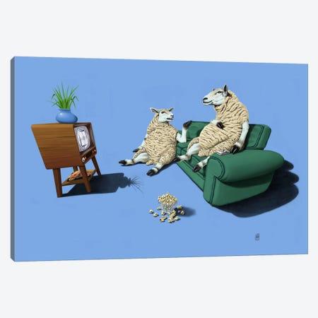 Sheep III Canvas Print #RSW28} by Rob Snow Canvas Print