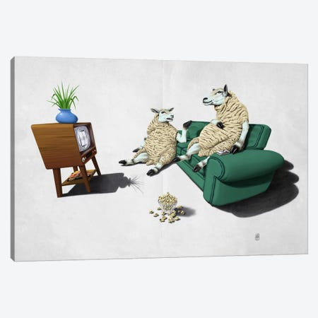 Sheep II Canvas Print #RSW29} by Rob Snow Canvas Print