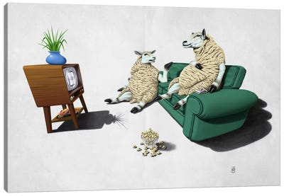 Sheep II Canvas Art Print