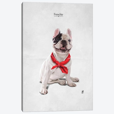 Frenchie I Canvas Print #RSW309} by Rob Snow Canvas Artwork