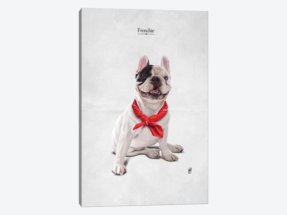 Frenchie I by Rob Snow 1-piece Canvas Wall Art