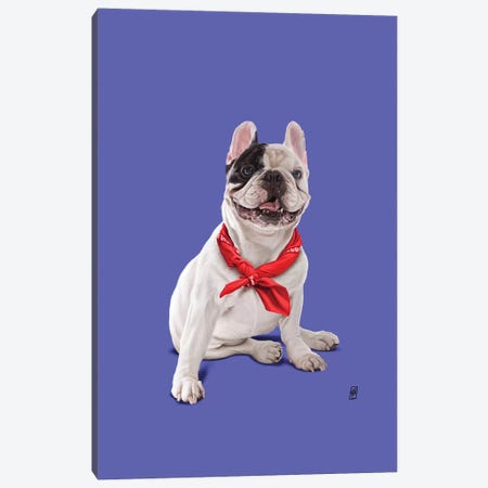 Frenchie II Canvas Print #RSW310} by Rob Snow Canvas Print