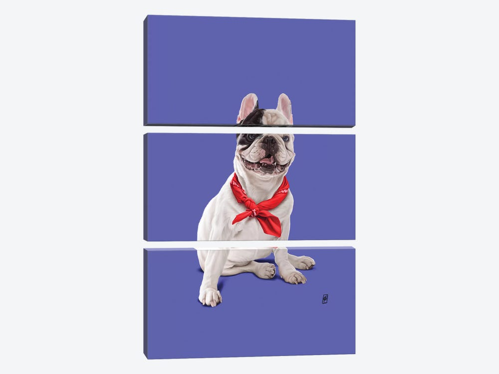 Frenchie II 3-piece Canvas Art