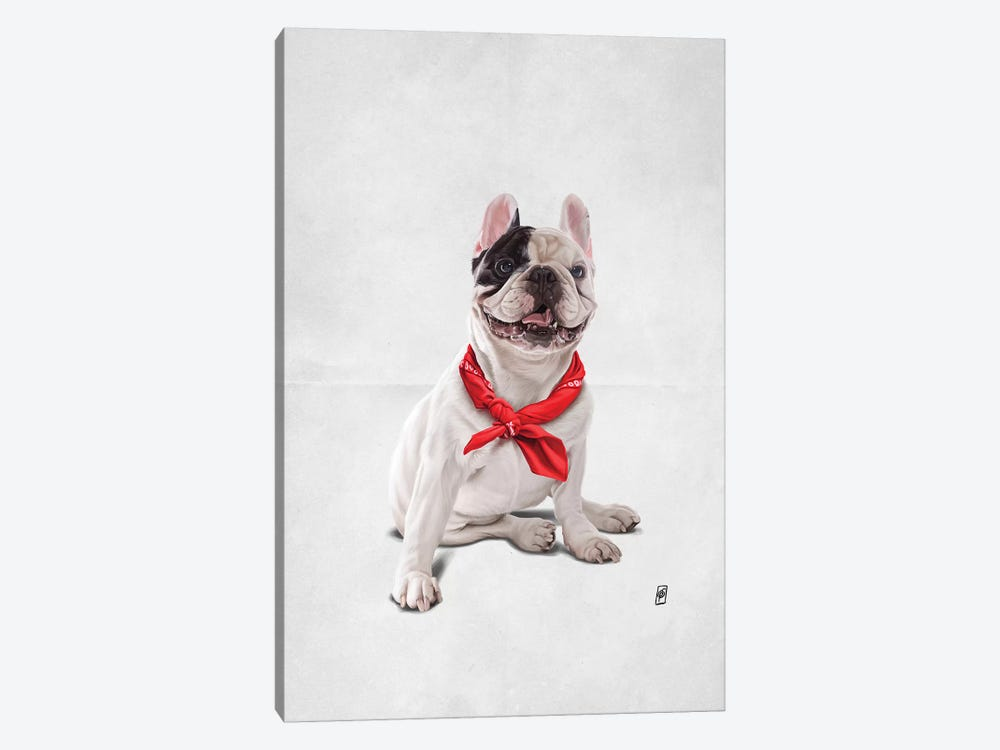 Frenchie III by Rob Snow 1-piece Canvas Art Print