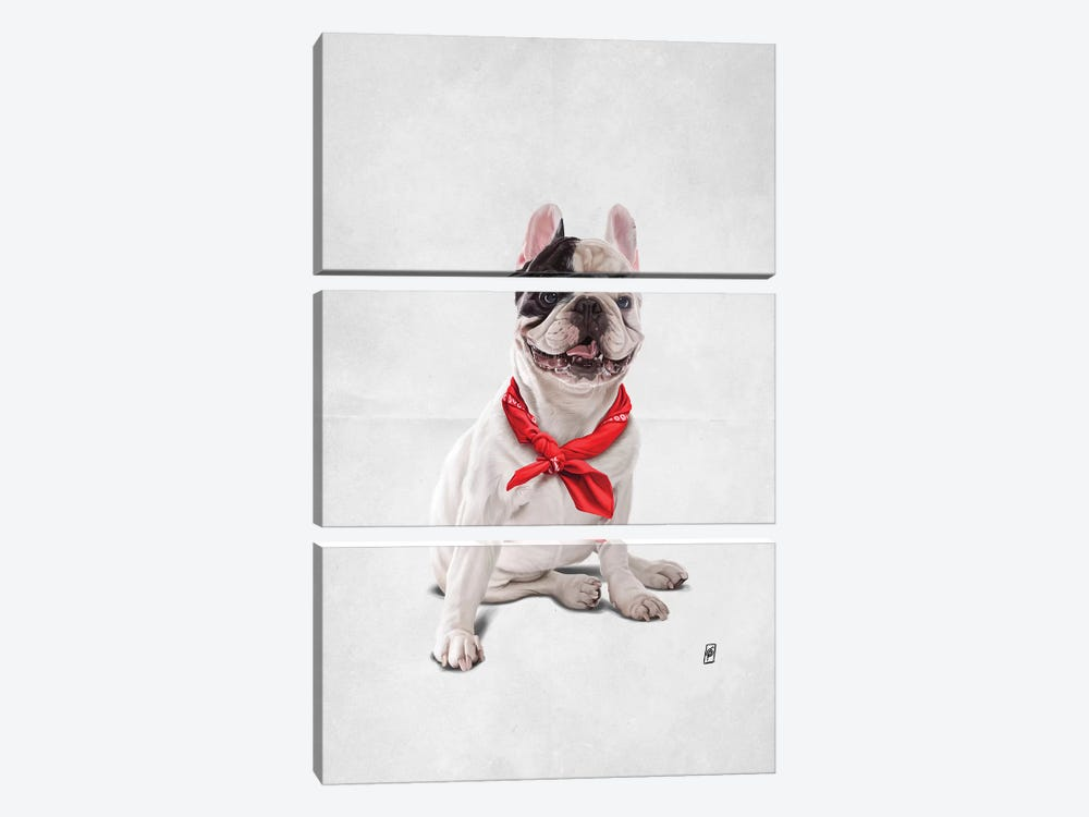 Frenchie III by Rob Snow 3-piece Canvas Print
