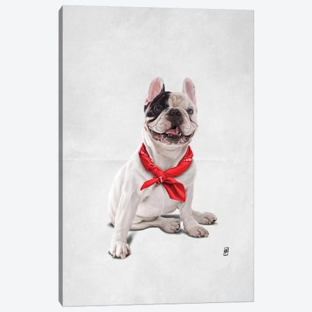 Frenchie III Canvas Print #RSW311} by Rob Snow Art Print