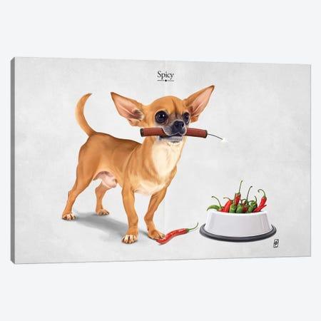 Spicy I Canvas Print #RSW315} by Rob Snow Canvas Art