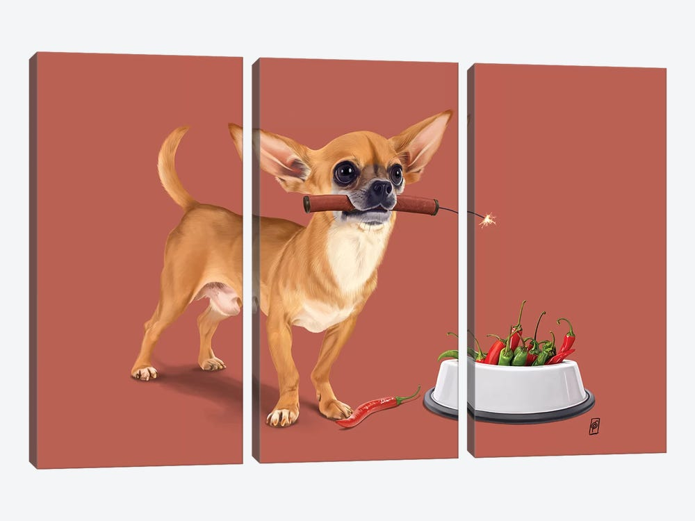 Spicy II by Rob Snow 3-piece Canvas Wall Art