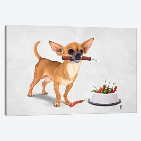 Spicy III Canvas Print #RSW317} by Rob Snow Canvas Artwork
