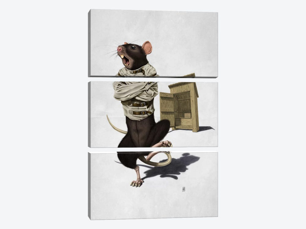 Shithouse II by Rob Snow 3-piece Canvas Wall Art