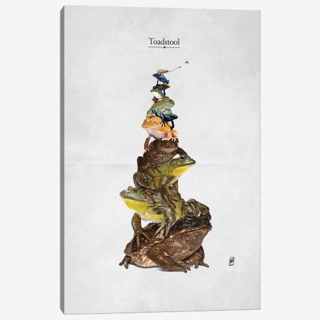 Toadstool Canvas Print #RSW366} by Rob Snow Art Print