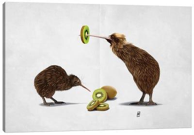 Kiwi (Wordless) Canvas Art Print