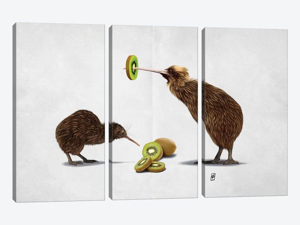 Kiwi (Wordless) by Rob Snow 3-piece Canvas Art
