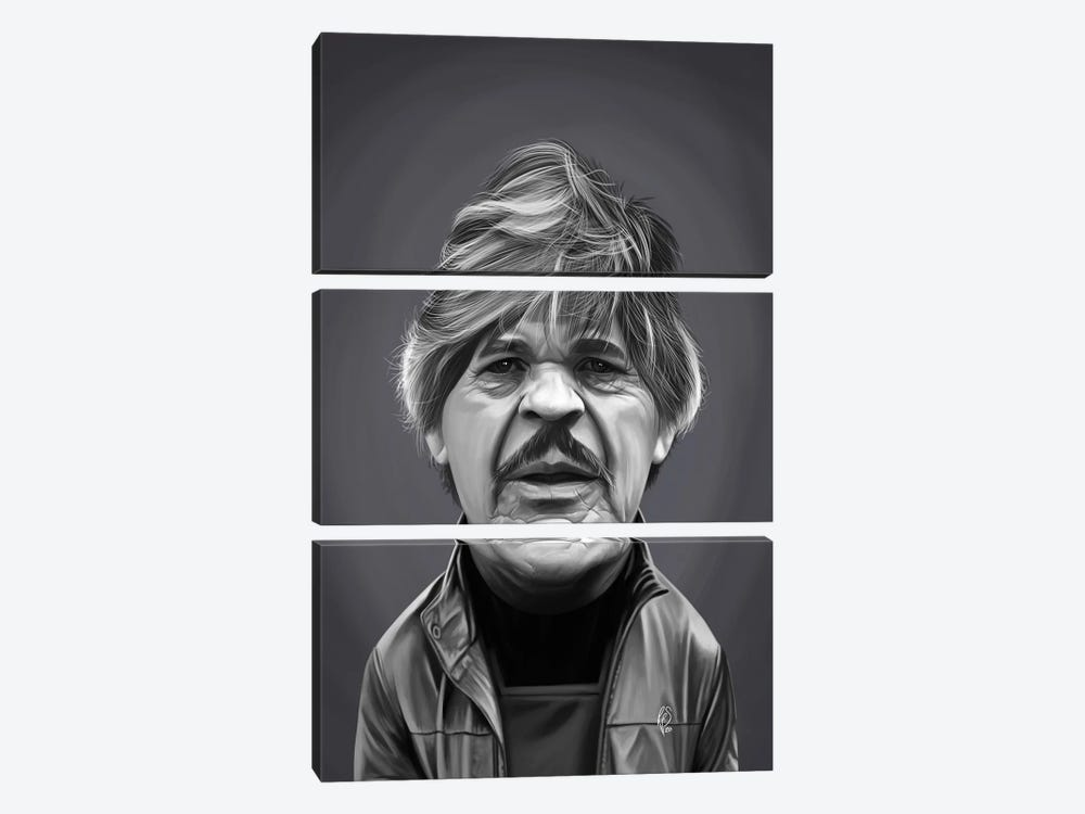 Charles Bronson by Rob Snow 3-piece Canvas Artwork