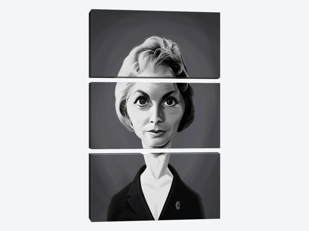 Janet Leigh by Rob Snow 3-piece Canvas Wall Art