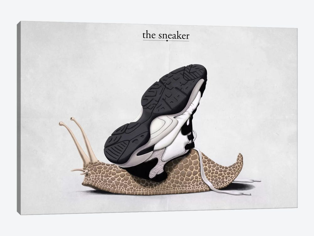 The Sneaker by Rob Snow 1-piece Canvas Artwork