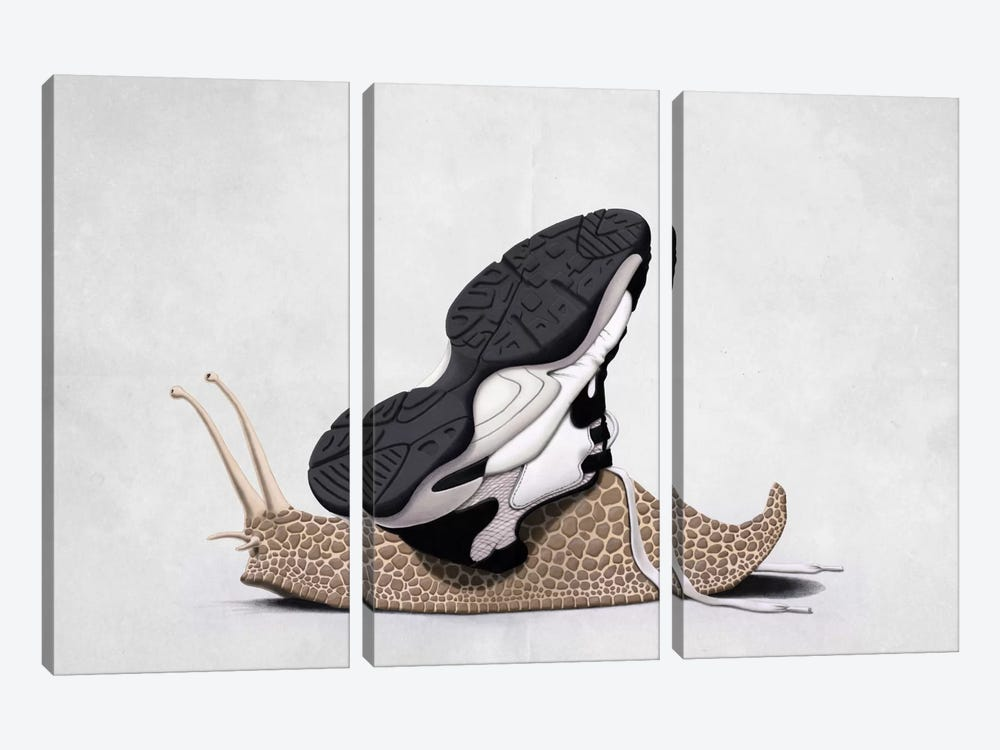The Sneaker II by Rob Snow 3-piece Canvas Art
