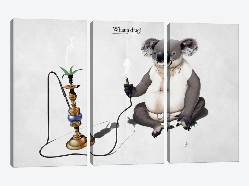 What A Drag! by Rob Snow 3-piece Canvas Wall Art