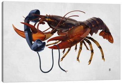 Calling Salvador II Canvas Print #RSW70