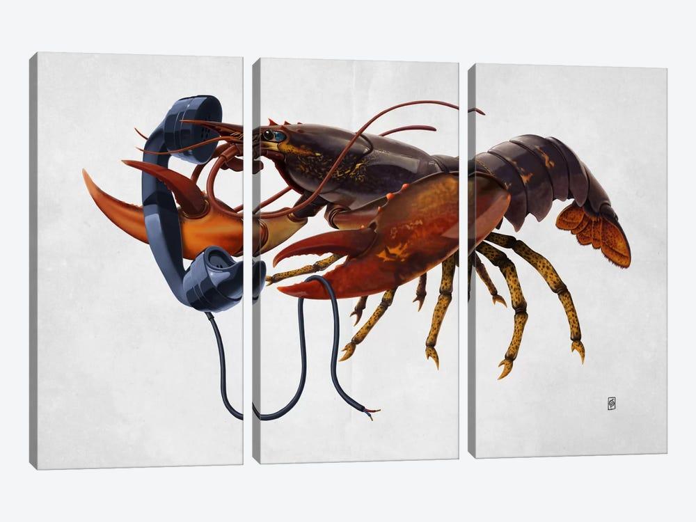 Calling Salvador II by Rob Snow 3-piece Canvas Wall Art