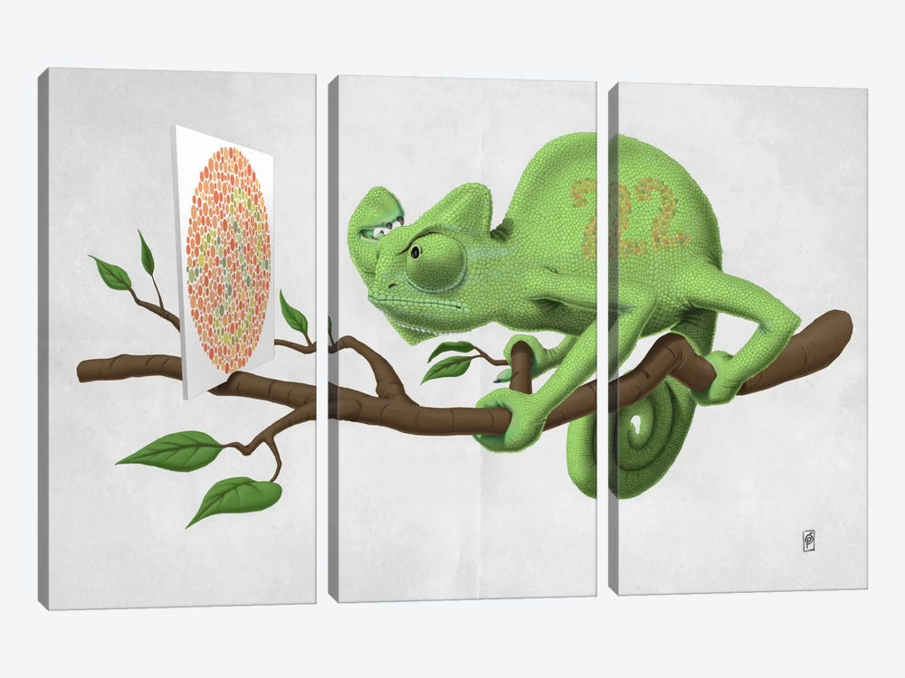 Can't See It Myself II by Rob Snow 3-piece Canvas Wall Art