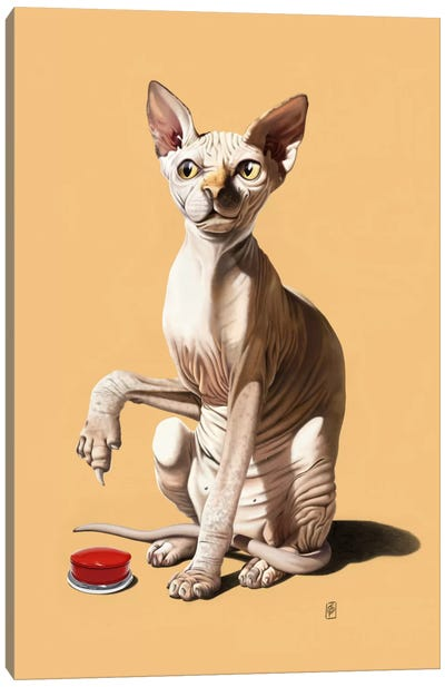 Cat-astrophe III Canvas Art Print