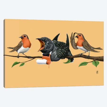Cock Robin III Canvas Print #RSW77} by Rob Snow Canvas Art Print