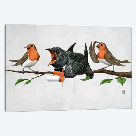 Cock Robin II Canvas Print #RSW78} by Rob Snow Canvas Artwork