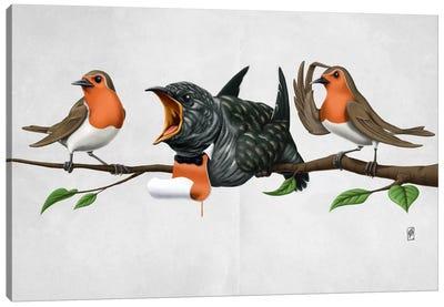 Cock Robin II Canvas Print #RSW78