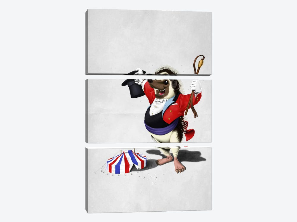 Itching To Perform II by Rob Snow 3-piece Canvas Artwork