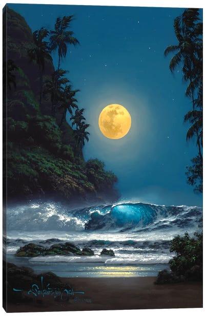 Midnight Gold Canvas Art Print