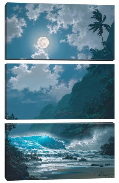 Midnight Rhapsody Canvas Art Print