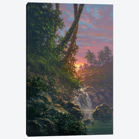 Nature's Hideaway Canvas Print #RTA16} by Roy Tabora Canvas Wall Art
