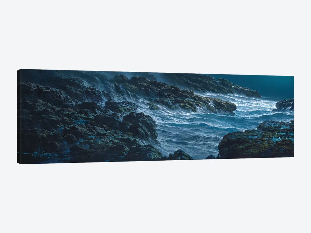 Tranquility by Roy Tabora 1-piece Canvas Artwork