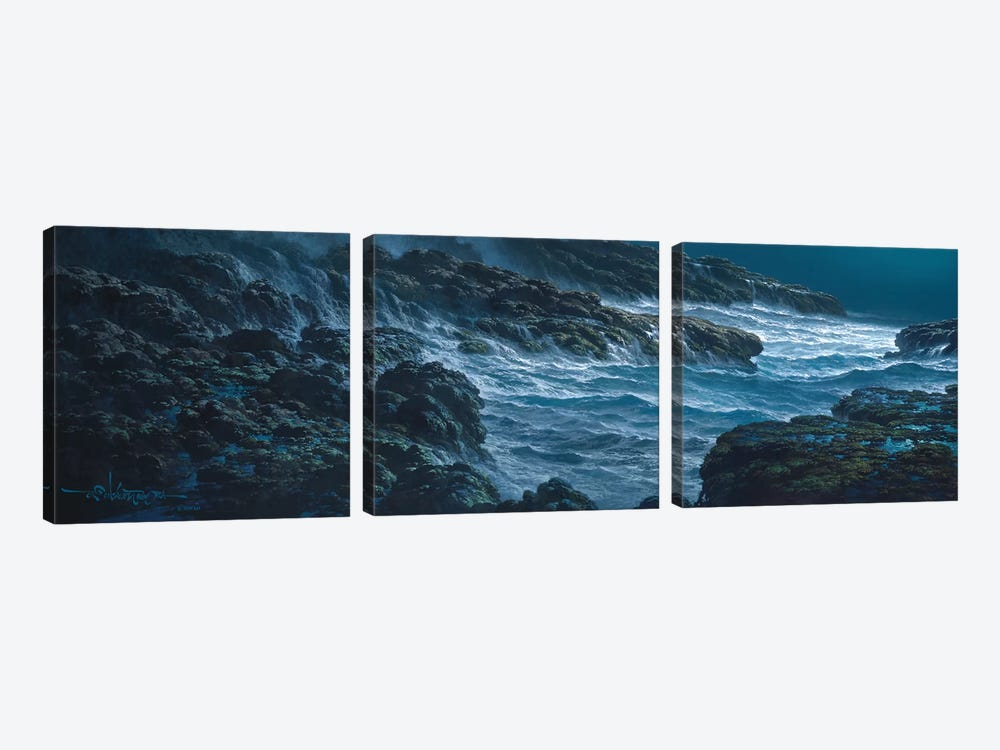 Tranquility by Roy Tabora 3-piece Canvas Artwork