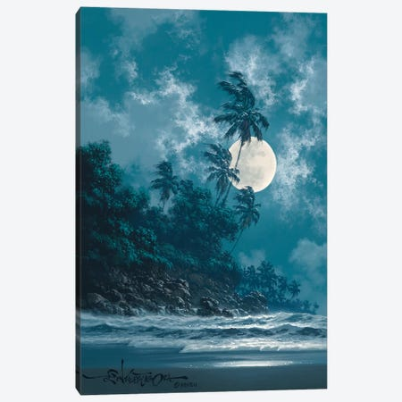 A Little Bit Of Midnight Canvas Print #RTA2} by Roy Tabora Canvas Wall Art