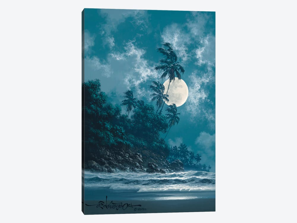 A Little Bit Of Midnight by Roy Tabora 1-piece Canvas Artwork