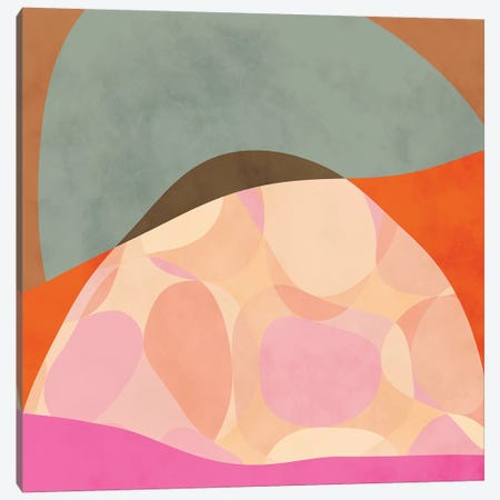 Shapes Study Tartaruga Canvas Print #RTB75} by Ana Rut Bré Art Print