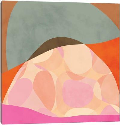 Shapes Study Tartaruga Canvas Art Print