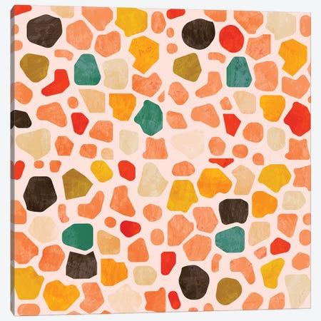 Terrazzo Mosaic Canvas Print #RTB87} by Ana Rut Bré Canvas Artwork