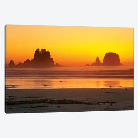 Vibrant Twilight, Point Of Arches, Shi Shi Beach, Olympic National Park, Washington, USA Canvas Print #RTI10} by Rob Tilley Canvas Art Print